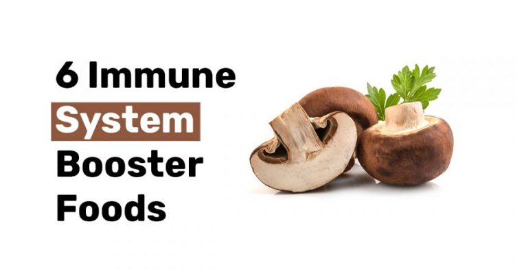 6 Immune System Booster Foods