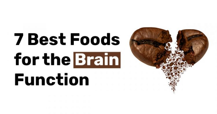 7 Best Foods for the Brain Function