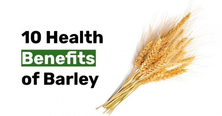 10 Health Benefits of Barley