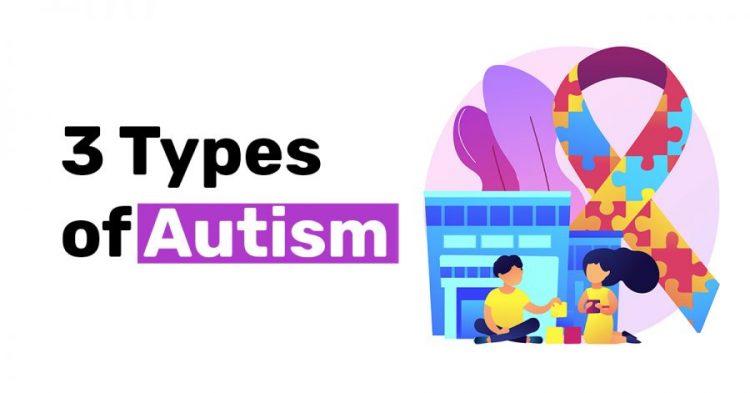 3 Types of Autism