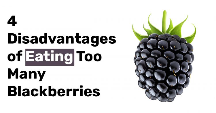 4 Disadvantages of Eating Too Many Blackberries