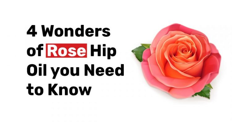 4 Wonders of Rose Hip Oil you Need to Know1