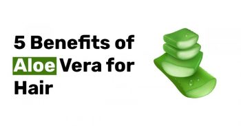 5 Benefits of Aloe Vera for Hair.jpg1