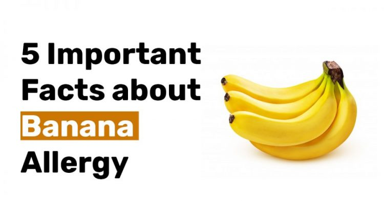 5 Important Facts about Banana