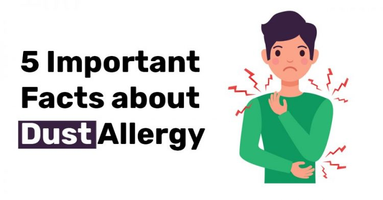 5 Important Facts about Dust Allergy