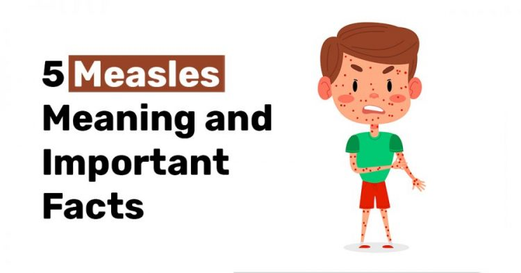 5 Measles Meaning and Important Facts