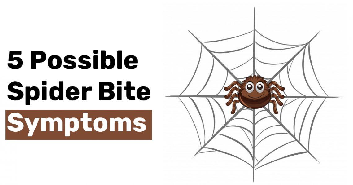 5 Possible Spider Bite Symptoms