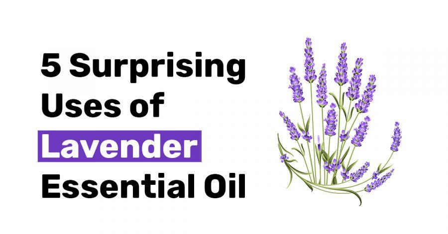 5 Surprising Uses of Lavender Essential Oil