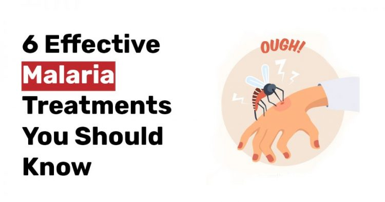 6 Effective Malaria Treatments You Should Know