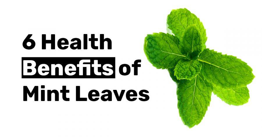 6 Health Benefits of Mint Leaves