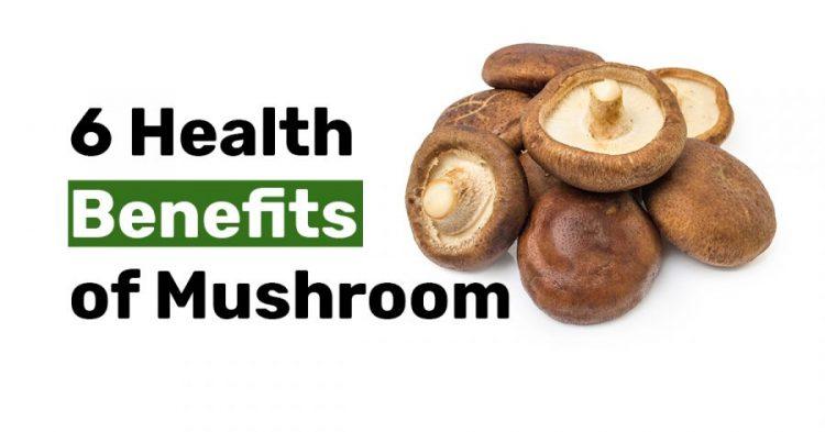 6 Health Benefits of Mushroom