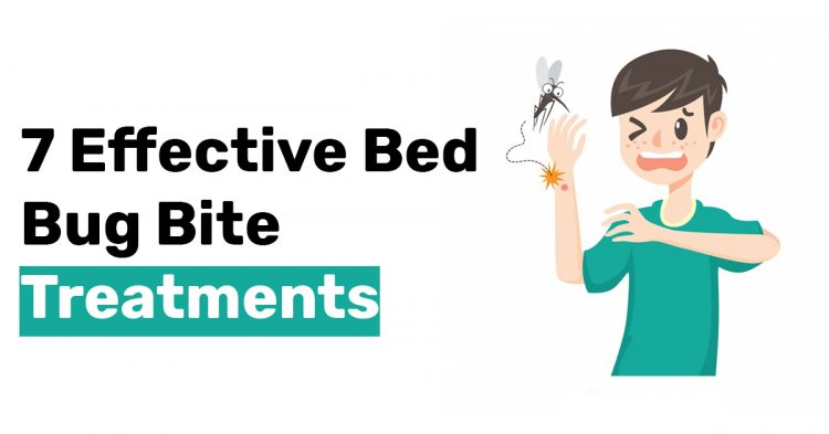 7 Effective Bed Bug Bite Treatments