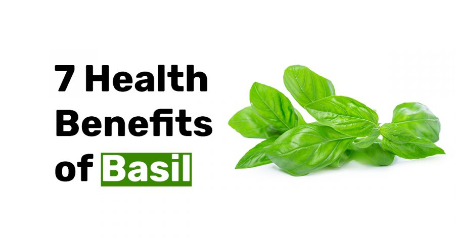 7 Health Benefits of Basil.jpg1