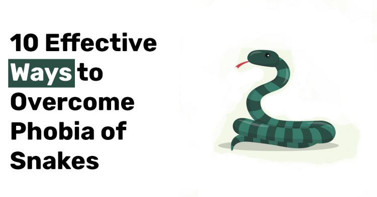 10 Effective Ways to Overcome Phobia of Snakes