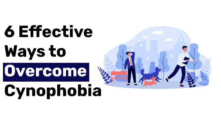 6 Effective Ways to Overcome Cynophobia
